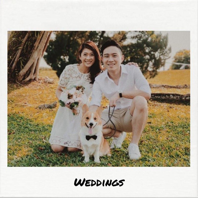 Danny & Stephanie's Wedding