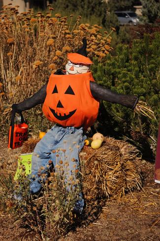 Scarecrow09.JPG