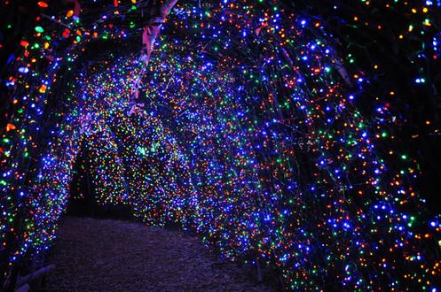 Lights03.JPG