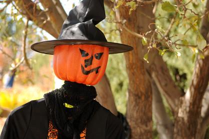 Scarecrow05.JPG