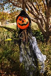 Scarecrow16.JPG