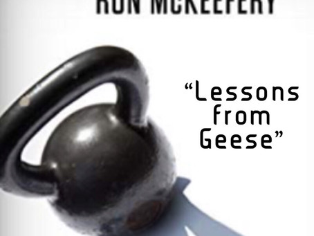 Tottenism Tuesday: Lessons from Geese