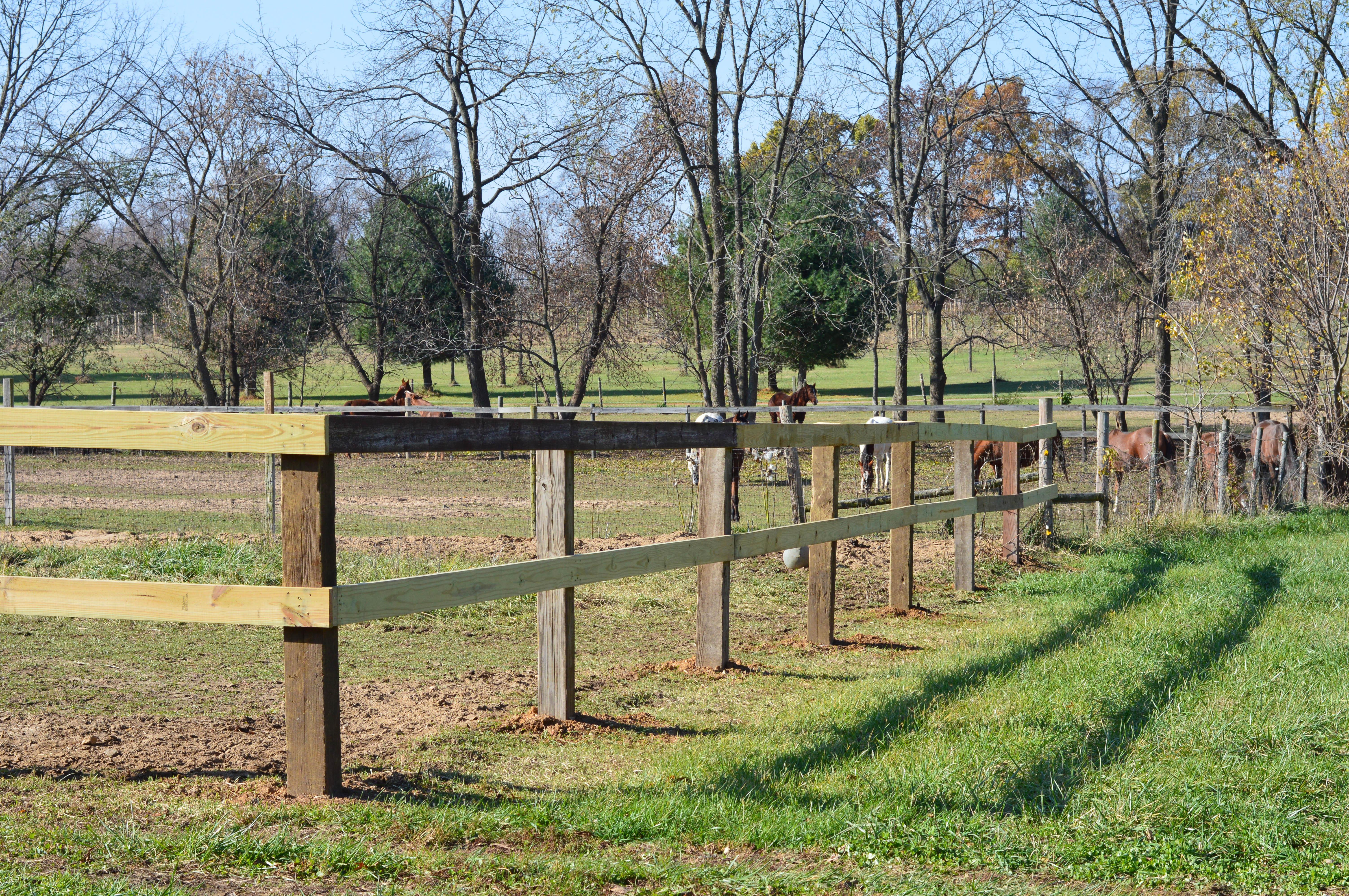 Rockin PJJR Ranch_Pasture
