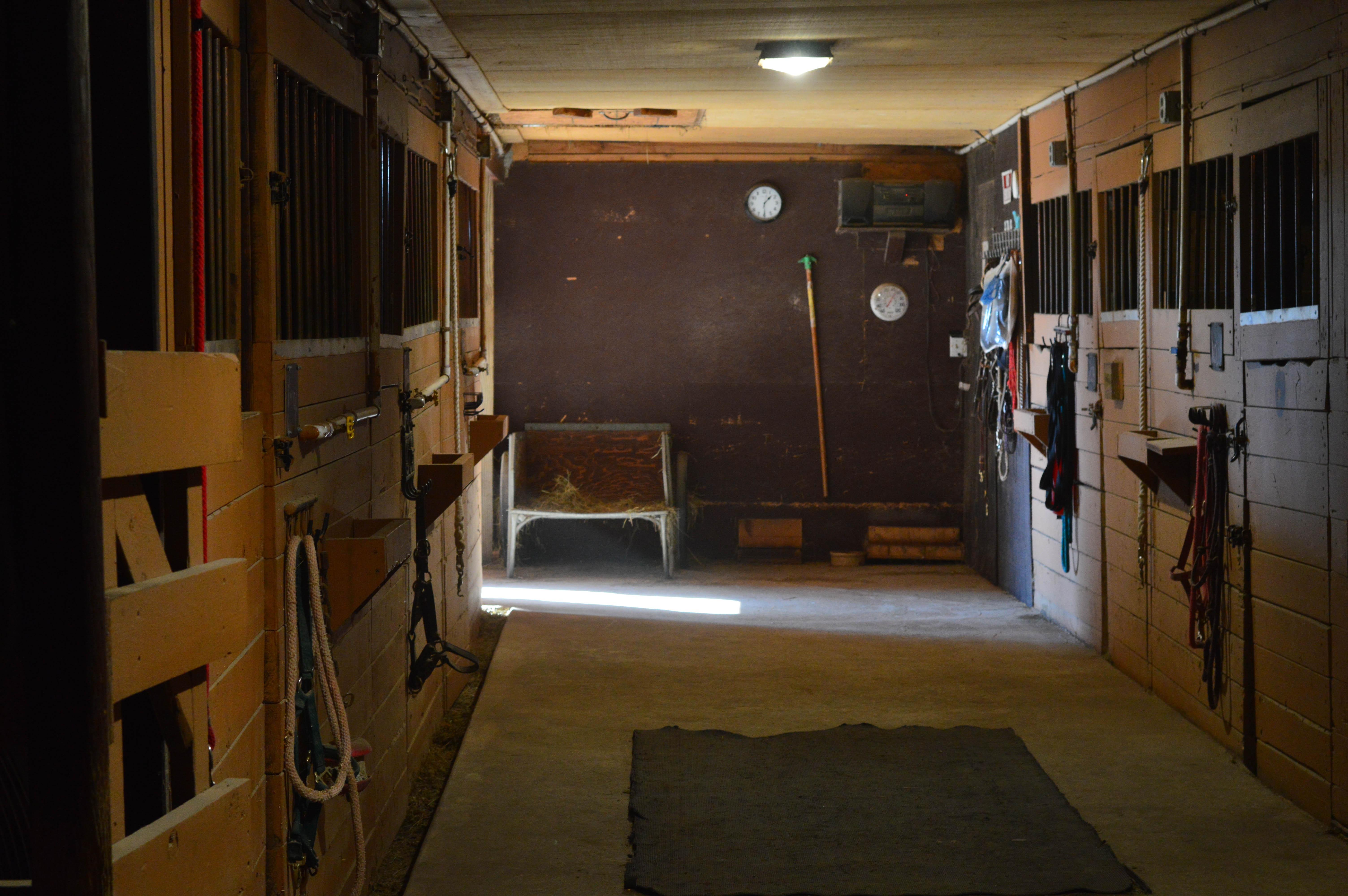 Horse Stalls_Rockin PJJR_Roscoe_IL