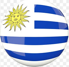 kisspng-flag-of-uruguay-photography-brazil-argentina-flag-5b0c7ba65fcc65_edited.jpg