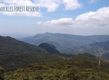 Hiking in Knuckles Forest Reserve, Sri Lanka