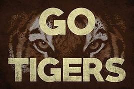 go tigers.jpg
