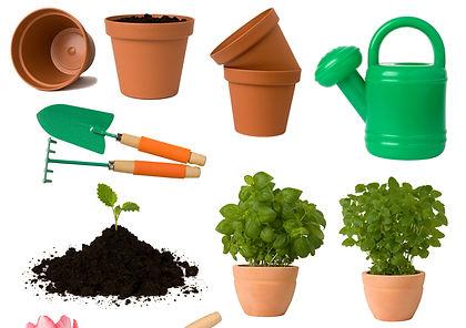Advertise with The Indigneous Gardener Web Magazine