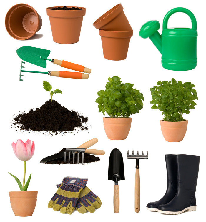 gardening supplies and plants