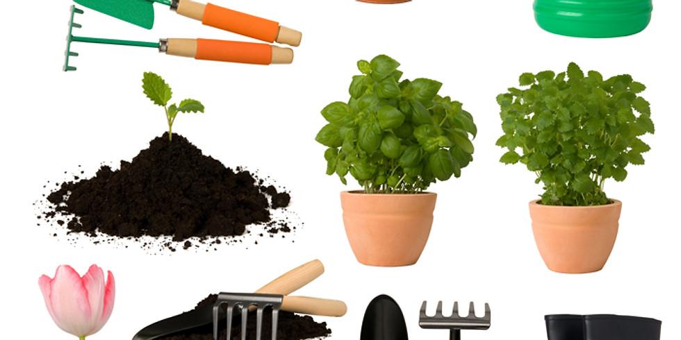 """Jardinagem Ecológica - (2º módulo) """"Praticante """""""
