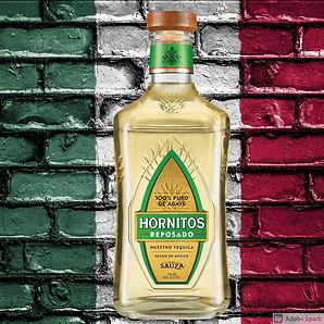 Hornitos Repo.jpg