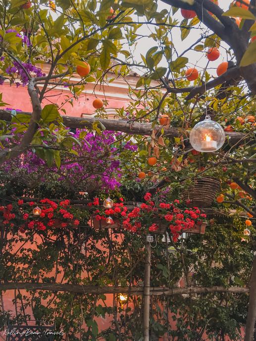 Beautiful Positano restaurant decor: Vine-clad timber trellis, flowers and lemon trees garden setting | RollingBear Travels.