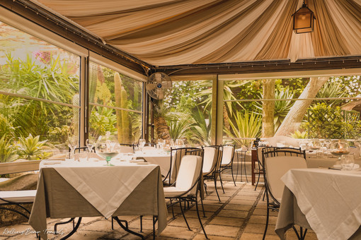 Al Palazzo restaurant ambience: A canopy of classy white furniture in a garden setting | RollingBear Travels.