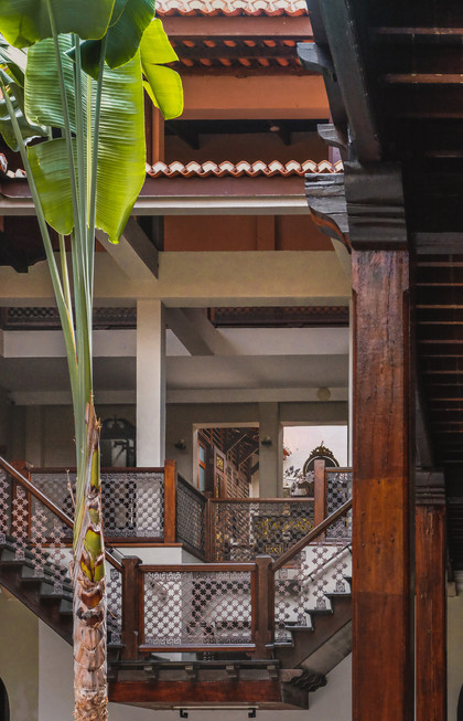 Timber stairs and the banana tree of the Seven Terraces Hotel courtyard / RollingBear Travels.