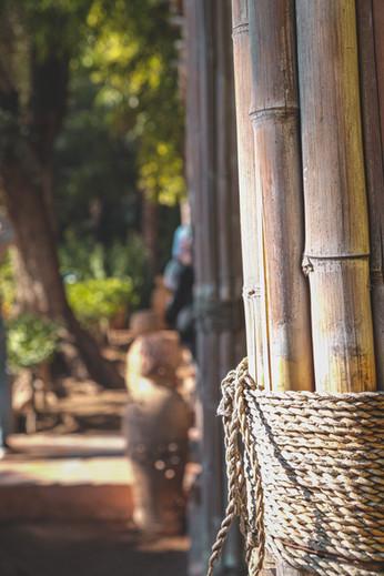Le Jardin Majorelle, Marrakech | RollingBear Travels