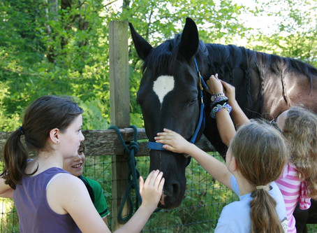 Riders Without Horses Program at WPPC