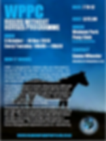 WPPC RWH flyer 2019.PNG