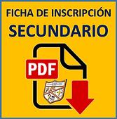 FIINSEC.png