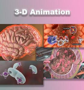 3-D Animation Cube.jpg