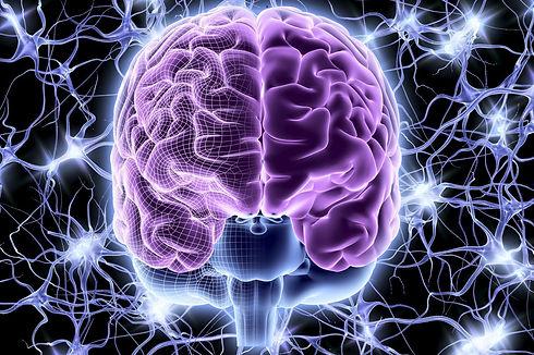 brain_neuron_activity-57d880483df78c5833a884c6.jpg
