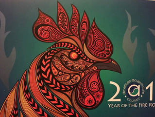 Happy Year of the Yin Fire Rooster!