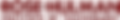 Rose-Hulman_logo_2016 (smaller).png