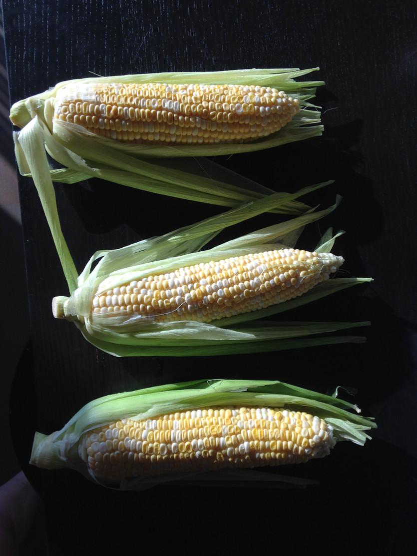 A Tale of Three Corns