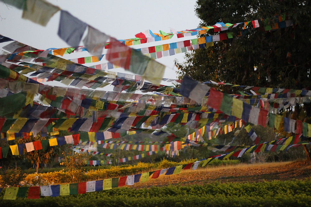 Prayer flags, Lumbini