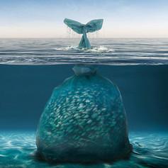 plasticos-victima oceanos.jpg
