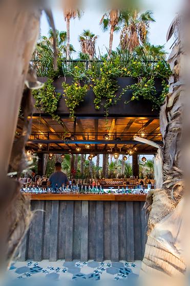 Bar Cabo_01_.png