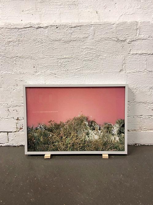 'Pink Lake, no. 1' by Prudence Bansemer