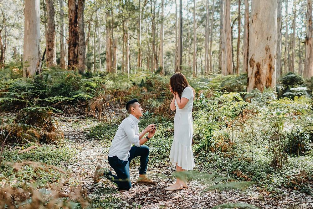 Boranup Forest Margaret River couples photoshoot session