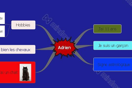 Adrien 6C
