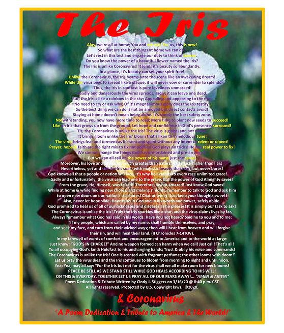 Edit 5 Iris poster-1.jpg