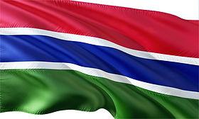 Gambia Flag.jpg