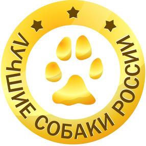 Лучшие собаки России