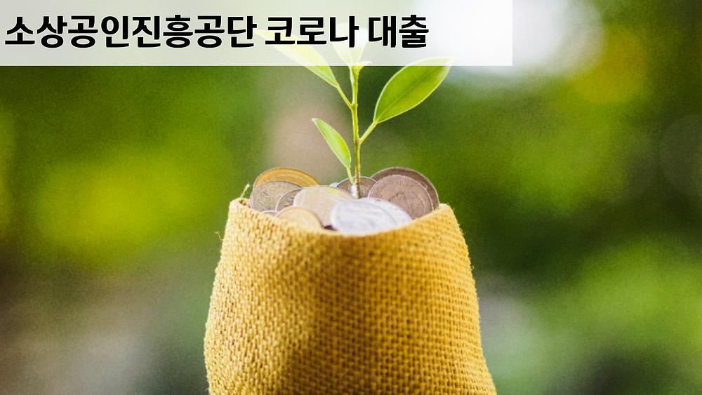 소상공인진흥공단 코로나 대출