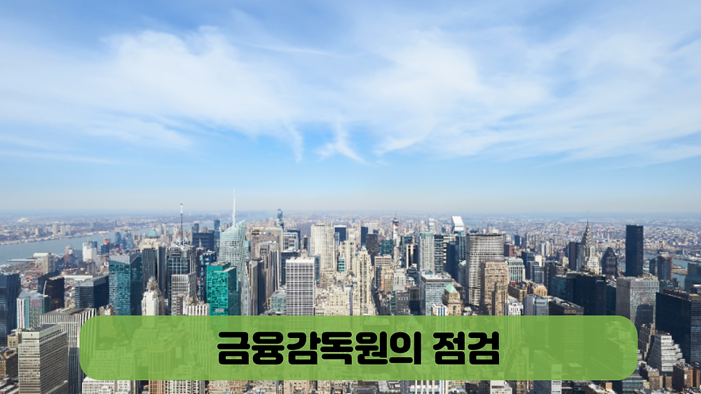 금융감독원의 점검