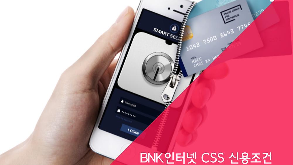 BNK인터넷 CSS 신용조건