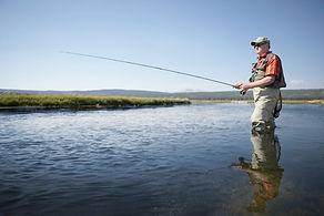 Cañas para pescar