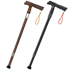 smart cane.png