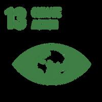 SDG_Icons_Inverted_Transparent_WEB-13.pn