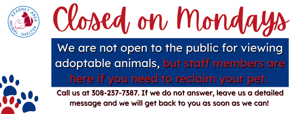 SPAY DAY COVER PHOTO (2).png