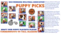 puppy playoffs website.png