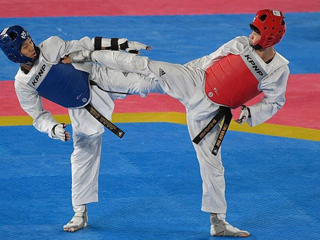 SEA Games: Ng's silver a ray of hope in dark year for Singapore taekwondo