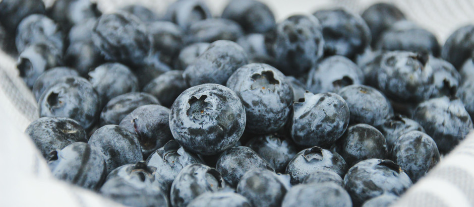 Blueberries: the amazing superfruit