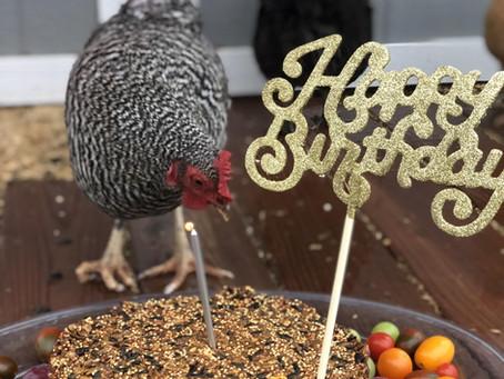 Happy's Birthday Cake