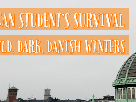 An American Student's Survival Guide to Cold, Dark Danish Winters
