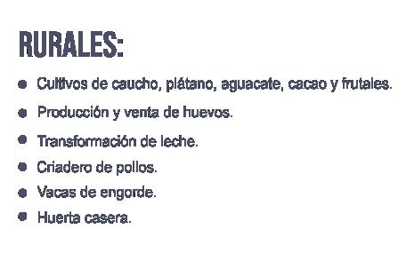 Correccion Proyectos Rurales.png