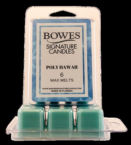 Poly Hawaii - Wax Melt